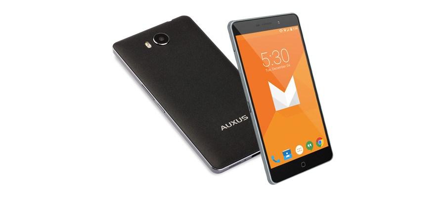 iBerry-Auxus-4X